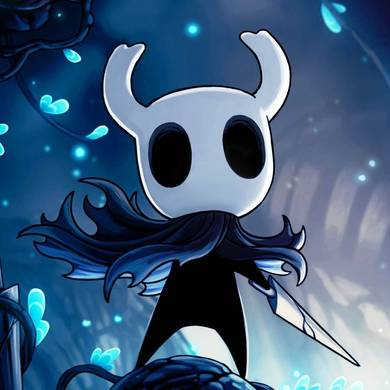 image-of-hollow-knight-ngnl.ir